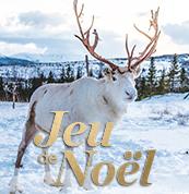 Grand Jeu de Noël